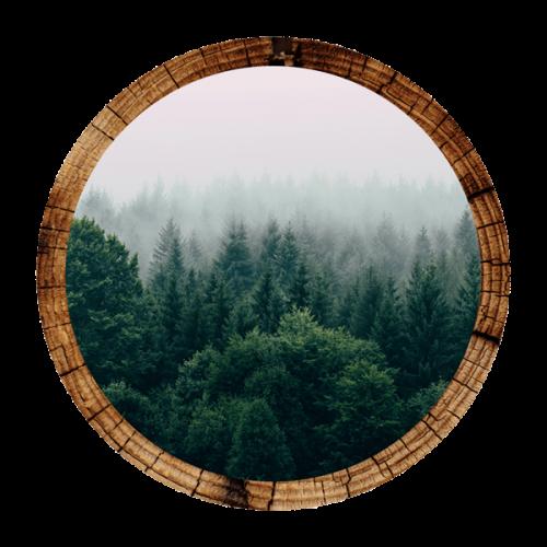 ventajas-de-la-madera